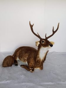 Animated sitting dark stag reindeer