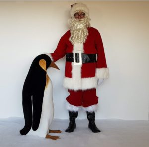 Large Female Penguin